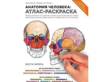 «Анатомия человека: атлас-раскраска» // фрагмент обложки