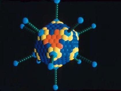Новая модель протеинкиназы дает возможность создать мощные лекарства от рака // Global Look Press