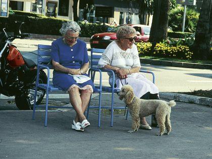 Пенсионный возраст грозят повышать постепенно // Андрей Нечаев / Global Look Press