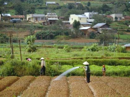 Посещение Вьетнама может оказаться самым приятным впечатлением в жизни // Robert Harding / Global Look Press