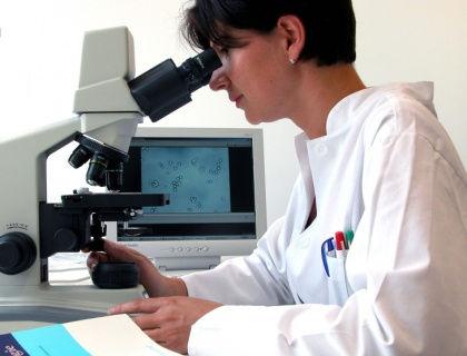 Пустоты человеческого тела можно увидеть только в микроскоп // CHROMORANGE / Bilderbox / Global Look Press
