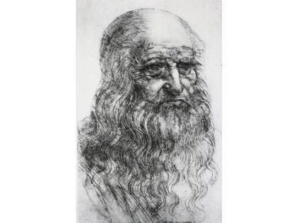 Леонардо да Винчи // Science Museum / Global Look Press