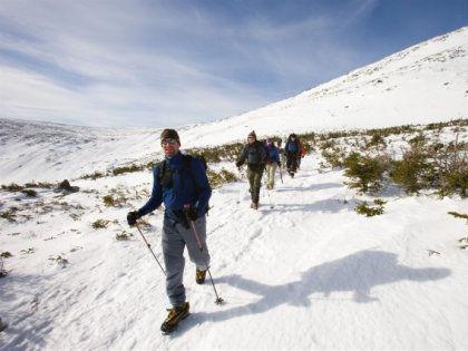 Пешая ходьба помогает мужчинам защищать сердце лучше бега или футбола // Global Look Press