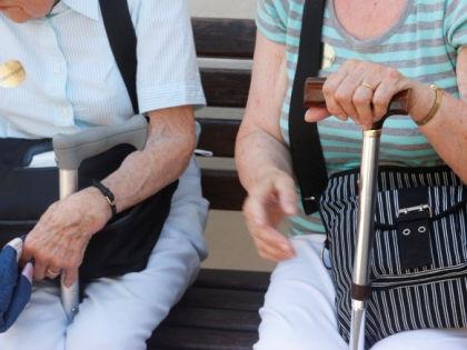 Ученые разделили болезнь Альцгеймера на разные подтипы // Global Look Press