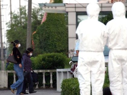 Вирус Зика переносят только комары // Global Look Press