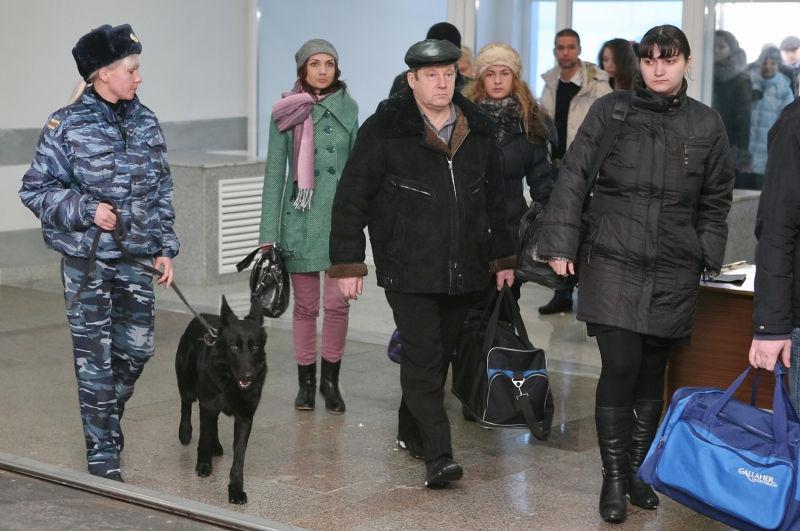 3,3 млн долларов пропало из аэропорта Домодедово // Viktor Pogontsev/Russian Look