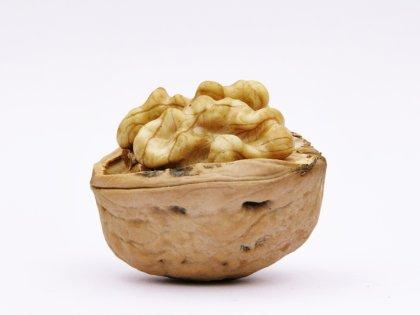 Грецкие орехи омолаживают кожу, повышают уровень энергии и защищают от рака // imagebroker/Alfred Schauhuber / Global Look Press