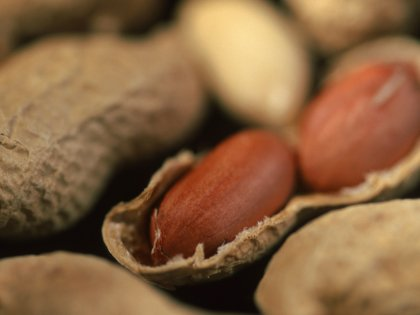 Аллергию на арахис можно победить с помощью иммуннотерапии // Arco Images / Larsse / Global Look Press