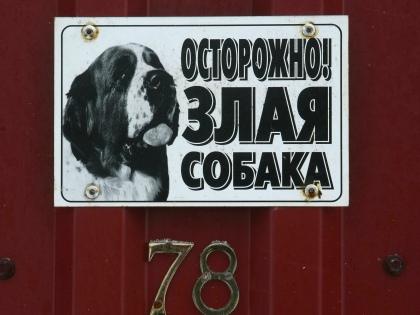 Про любую собаку нужно понимать, что это всегда животное // Global Look Press