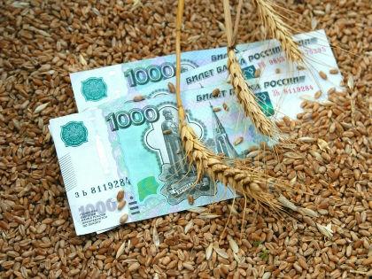 Россия становится сельскохозяйственной державой? // Сергей Ковалев / Global Look Press