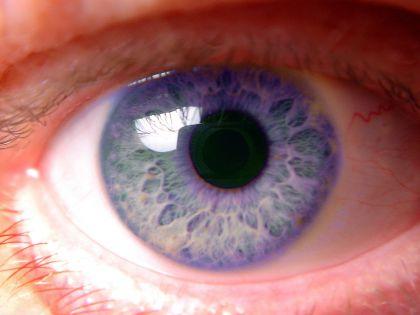 Наличие голубых глаз также существенно повышало шансы на хорошие результаты в работе и учебе // Chromorange / Bilderdox / Global Look Press