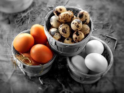 Куриные яйца помогут избавиться от похмелья и укрепить кости // Paul Williams - Funkystock / Global Look Press