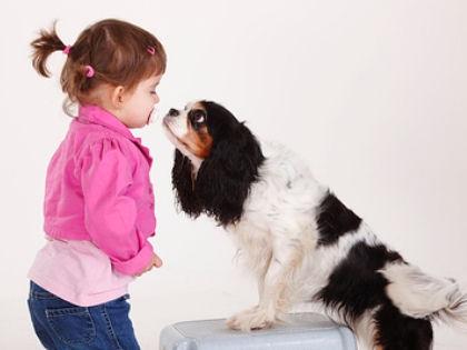 Уход за домашними животными полезен для страдающих диабетом детей и подростков // Global Look Press