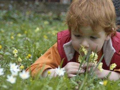 Распознать аутизм у ребенка можно по его способности различать запахи // Global Look Press
