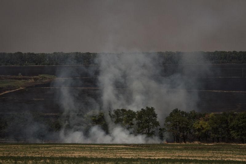80 возгораний травы зафиксировали в Новой Москве за последние 4 дня // Global Look Press