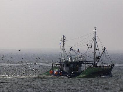 Внимание к системе рыбной отрасли привлекла трагедия с траулером «Дальний Восток» //  Global Look