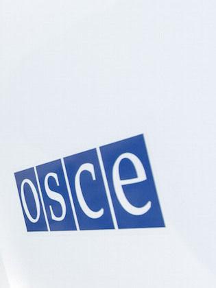 В доступе в Широкино 11 апреля ОБСЕ было отказано //  Global Look
