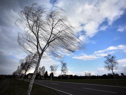 Сильный ветер и повышенное атмосферное давление ожидаются в столичном регионе ГОЛОДНЫЙ ДЕНЬ // Global Look Press