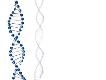 Найден мощный белок, помогающий клеткам восстанавливать поврежденные ДНК // Global Look Press