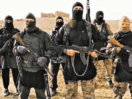 Террористы обещают новобранцам красивую и безбедную жизнь, только на деле все выходит иначе // Global Look Press