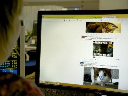 11% россиян никогда не делали перерыв в использовании социальных сетей в период отпуска // Global Look Press