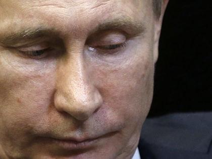 Владимир Путин // Максим Шипенко / Global Look Press