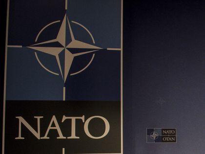 Так ли агрессивны действия НАТО и чего ждать от этой организации в будущем? // Wiktor Dabkowski / Global Look Press