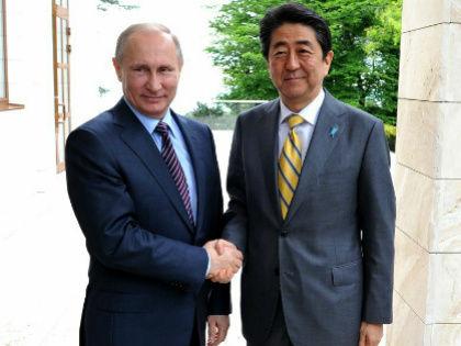 Владимир Путин и Синдзо Абэ // Global Look Press