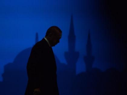 Извинений Эрдогана не хватит, чтобы вновь наладить экономические связи // Benoit Doppagne / Global Look Press