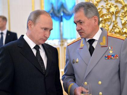 Владимир Путин и Сергей Шойгу // Global Look Press