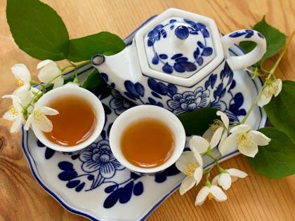 Медики уже давно стараются привлечь наше внимание к зеленому чаю // Global Look Press