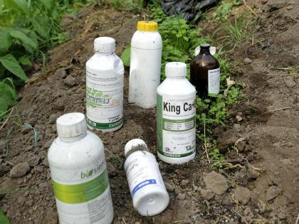 Выбирать препараты следует только из тех, которые предназначены для использования садоводами-любителями, а не доставать, как многие любят делать, профессиональные // Global Look Press