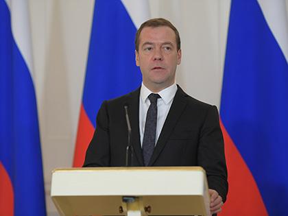 """Несмотря на решение суда, кедровую рощу в """"усадьбе Медведева"""" продолжают вырубать // Global Look Press"""