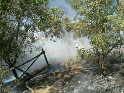 В августе в Ростове-на-Дону выгорел почти целый микрорайон // Global Look Press