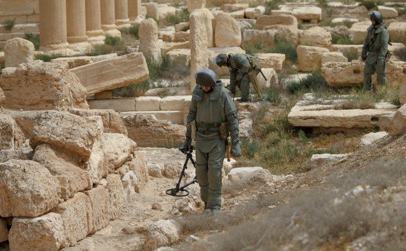 Сирия // Global Look Press