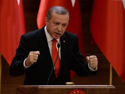 Реджеп Тайип Эрдоган // Global Look Press