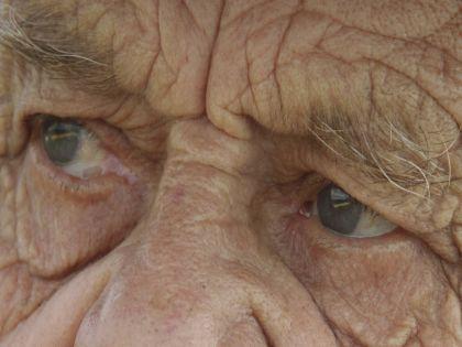 Нельзя назвать какой-то возраст самым лучшим для функций мозга, считает учёный // Николай Титов / Russian Look