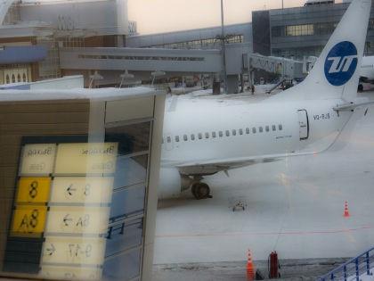 После авиакатастрофы в Египте был поднят вопрос безопасности аэропортов //  Сергей Фомин / Russian Look