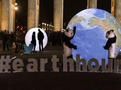 Это просто пиар-акция, сказала эколог // Global Look Press