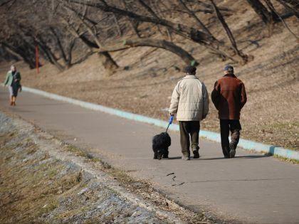 Потепление в Москве не задержится, уверяют синоптики // Dai Tiangfang / Global Look Press