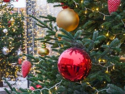 Жительница Москвы перенесла елку в свой подъезд из чужого // Сергей Смирнов / Global Look Press