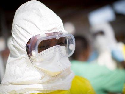 Ученые проследили за мутациями вируса Эбола в течение 40 лет // Global Look Press