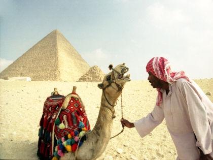 По мнению египтолога, порноролик унижает египетскую цивилизацию // Юрий Маслаев / Russian Look