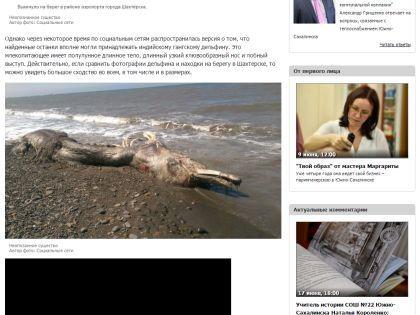 Тело неизвестного животного // Сайт Sakhalinmedia.ru