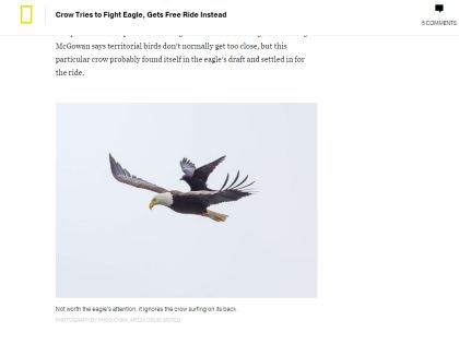 Фото Фу Чана // Сайт National Geographic