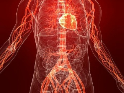 Атеросклероз может привести к ишемической болезни сердца, которая грозит инфарктами миокарда, или к сужению сосудов мозга, что часто приводит к инсультам // Стоп-кадр YouTube