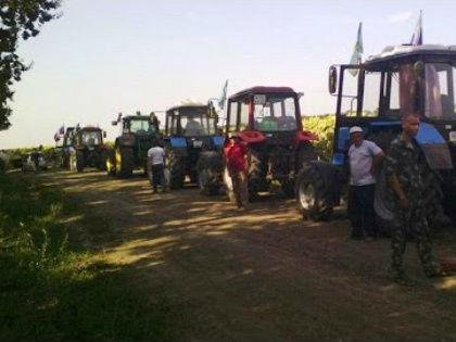 Кубанских фермеров, которые с конца лета устраивают «тракторные марши», пригласили на круглый стол в Минсельхоз // Стоп-кадр YouTube