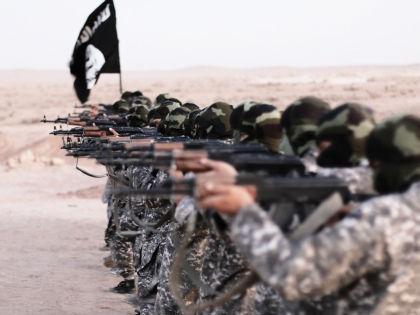 Власти Штатов не могут решить, насколько стране нужно сотрудничество с Россией в борьбе с ИГИЛ // Global Look Press