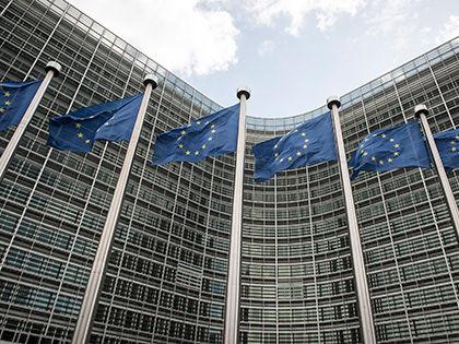 Согласовать позицию планируется 19–20 марта в Брюсселе // Виктор Дабковски / Global Look Press