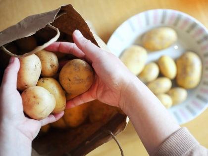 Молодой картофель // Global Look